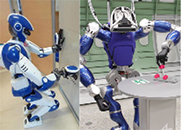A IEEE RAM Special Issue on Humanoid Robot Applications in Real World