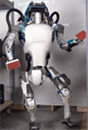 B IEEE RAM Special Issue on Humanoid Robot Applications in Real World