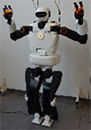 C IEEE RAM Special Issue on Humanoid Robot Applications in Real World